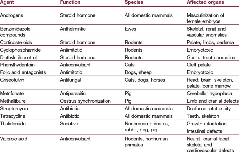 teratogens and pregnancy Teratogenic drugs: a teratogen is an agent that can disturb the development of the embryo or fetus teratogens halt the pregnancy or produce a congenital malformation (a birth defect) classes of teratogens include radiation, maternal infections, chemicals, and drugs.