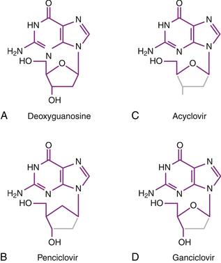 Antiviral and Immunomodulatory Drugs | Veterian Key
