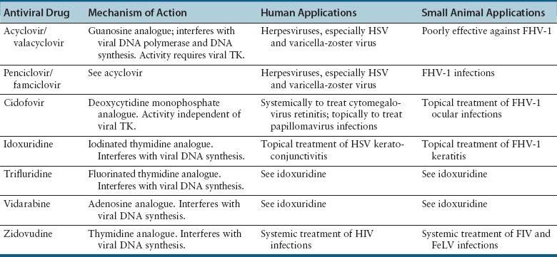 antiviral drugs for papillomavirus